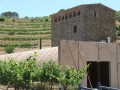 sinen winery