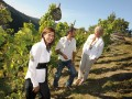 bocking team in vineyards