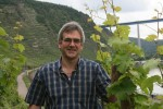konrad hahn in the vineyards