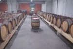 fayolle barrel ageing cellar