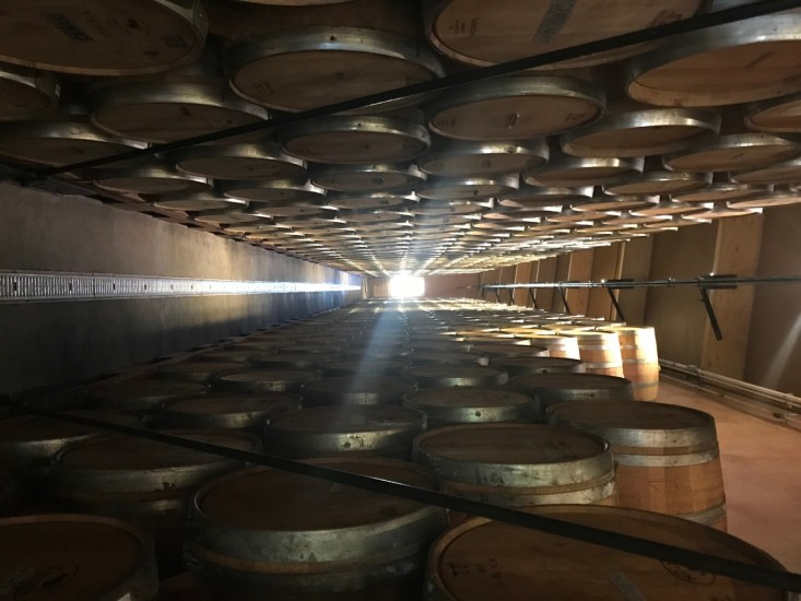 zanon barrel room