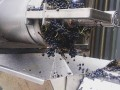 First batch of shiraz Vintage 2018