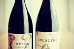 holocene bottles on table
