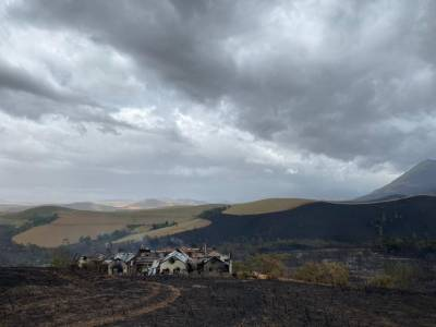 Wildfire Destroys Lismore Estate Vineyards