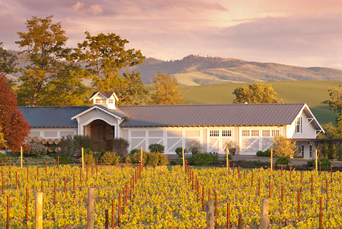 Abeja Vineyards