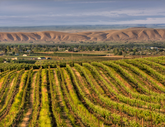 Betz Yakima Valley