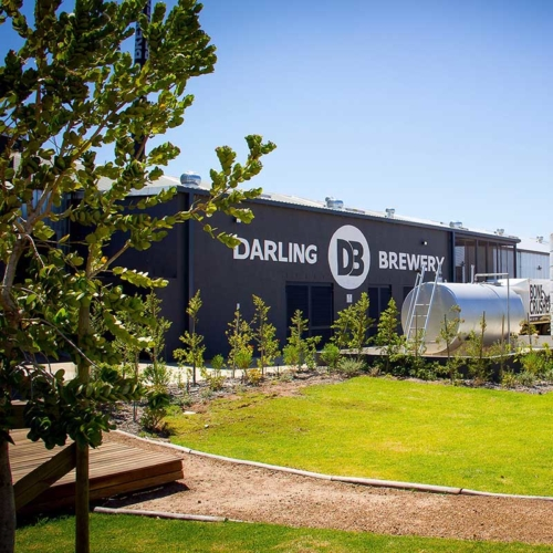 darling brew brewery