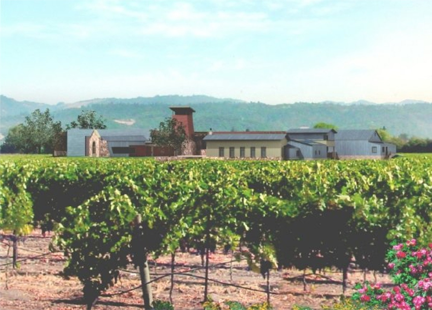 levendi winery