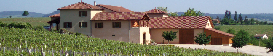 maurice martin winery
