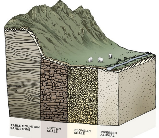 soils of the riebeek valley