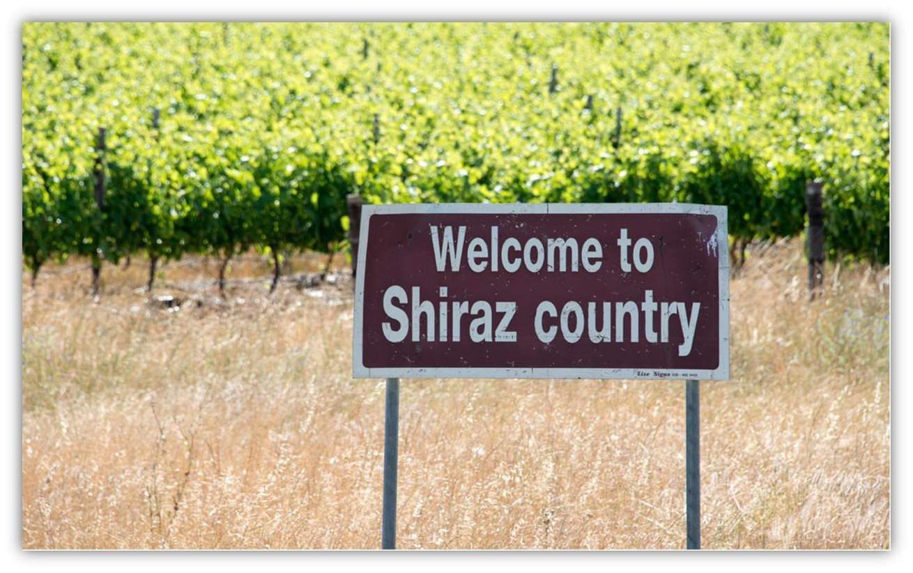 this is shiraz country