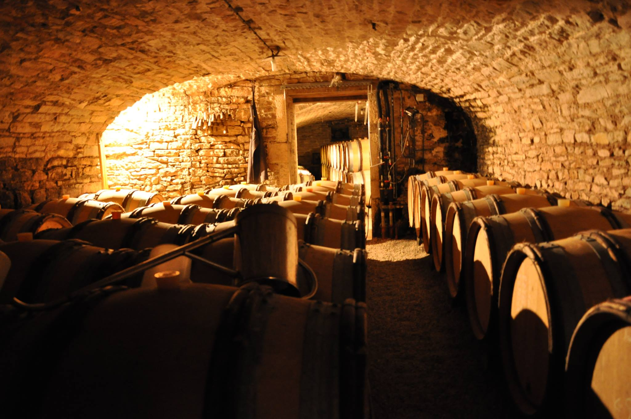 saumaize cellars 01